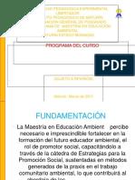 PROGRAMA DEL CURSO promocion