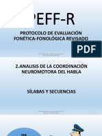 PEFF-R COMPLETO.pdf