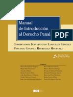 Introducción al derecho penal.pdf