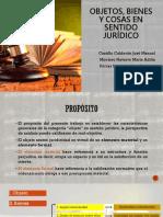 EXPOSICIÓN- OBJETOS, COSAS Y BIENES EN SENTIDO JURÍDICO