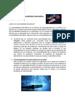 La Vulnerabilidad Informática_andy