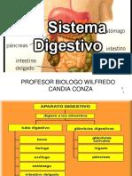 Aparato Digestivo final.pdf