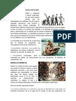 Evolución Social Económica Del Hombr1