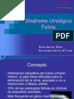 fus3.pdf