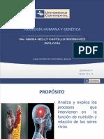 07- NUTRICIÓN Y SISTEMA DE COORDINACIÓN E INTEGRACION.pptx