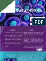 Mujer Joven MIRANDA -  MJPSUV- FORMACION.pptx