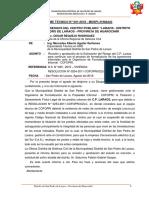 INFORME TECNICO N° 001 - 2018 MAAQ - ESTIMACION DEL RIESGO LARAOS - MAAQ