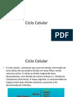 Ciclo Celular- Biologia celular