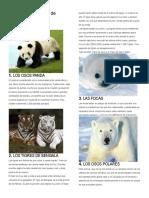 10  animales en peligro de extincion.docx