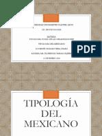 TIPOLOGÍA DEL MEXICANO psicologia de las organizaciones.