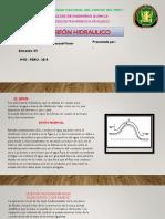 Presentación1 FLUIDOS SIFON