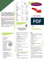 leaflet dislipid