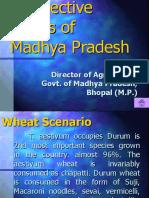 WheatStatusMP