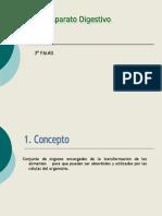 Sistema-digestivo 3 PMAR