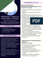 HOJA DE VIDA BRENDA VERGARA T 2019