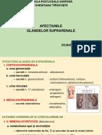 Curs 5-7 Bolile suprarenalei.pptx