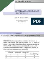 CURS_RezolvGraficaPPL.pdf