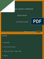 Vetores Normal e Binormal.pdf