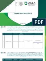 Padr_n_de_Terceros-Auditor_as_090518