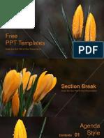 Natural Flower-de-luce PowerPoint Templates