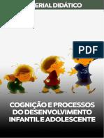 COGNIÇÃO-E-PROCESSOS-DO-DESENVOLVIMENTO-INFANTIL-E-ADOLESCENCIA.pdf