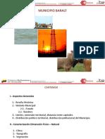 BARALT 2010-2011.pdf