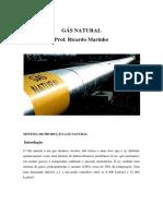 Gás Natural Produção Detalhes