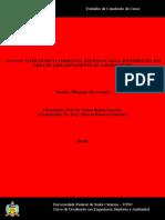 AVALIAÇÃO DE PASSIVO AMBIENTAL EM SOLO E ÁGUA em área de armazenamento de combustíveis.pdf