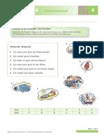 schr4-int-L08-diktat.pdf