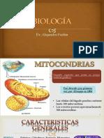clase-5-Estructura-y-fisiologia-de-organelos-transductores-de-energía-Mitocondria-plastos-REVISADO.pptx