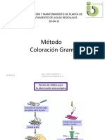 9 Coloracion_Gram_-_PTAR