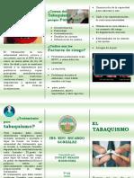 FOLLETO EL TABACO.docx