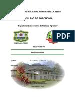 Analisi-Foliar.docx