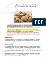 Alimentos Sin Gluten_Beneficiosos Para todos, diabetes, celiaqia