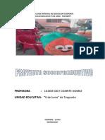 PSP 2017 PROFA LILIAM.docx.pdf
