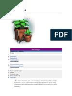 Herbología.docx