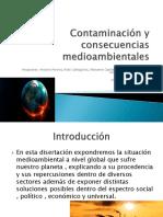 Contaminación y consecuencias medioambientales