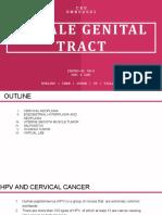 [PATHO-B] 5S-2 FEMALE GENITAL TRACT