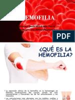 24 HEMOFILIA.pptx