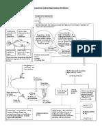 Ecosystems_Ecology Worksheet