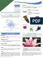 A-flor.pdf