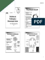 AulaDisturbiosDaProliferação&Crescimento2019.2