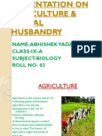 PRESENTATION ON AGRICULTURE & ANIMAL HUSBANDRY.ppt.pptx