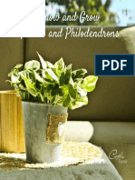 Know and Grow Pothos and Philodendrons