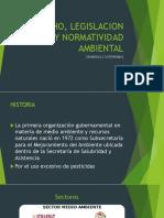 DERECHO, LEGISLACION Y NORMATIVIDAD AMBIENTAL.pptx