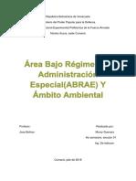 ABRAE.pdf