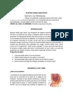 Charla Ca de prostata.docx
