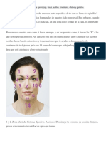 areas de la cara