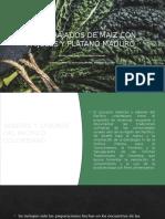 ABORRAJADOS DE MAIZ CON FRIJOLES Y PLATANO.pptx