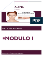 MICROBLADING12 (2).pptx